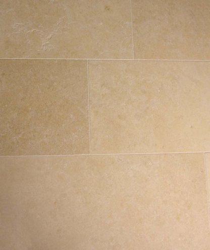 Golden Shell Limestone Honed Stone Floor